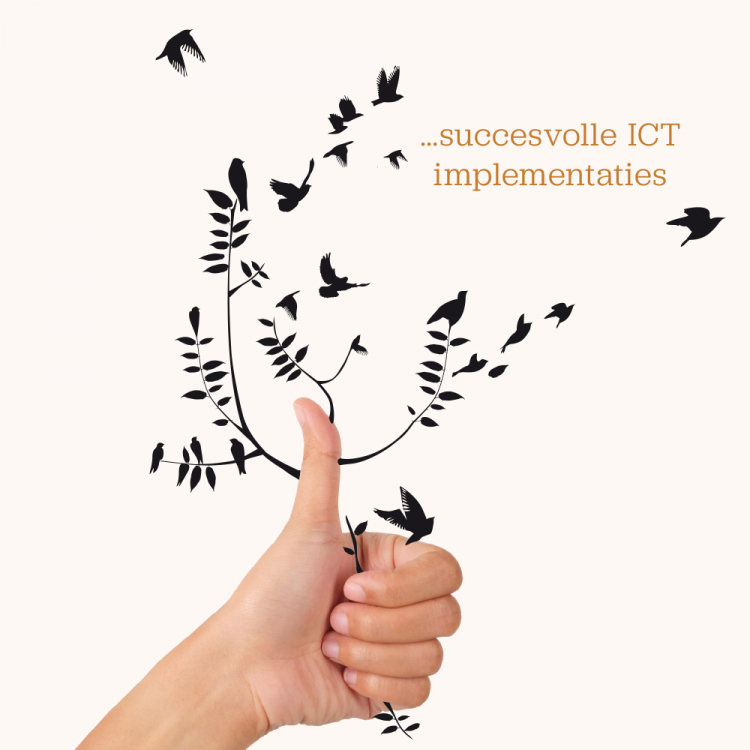 Succesvolle ICT Implementaties